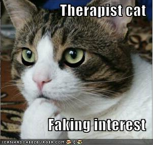 psychotherapy and cat What is cognitive analytic therapy (cat) brings together how is cognitive analytic therapy different to other forms of psychotherapy.